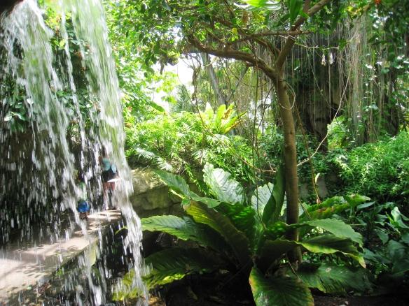 Cleveland_Botanical_Garden_-_interior_2
